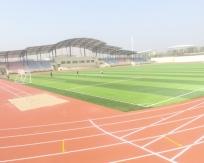 山东财经大学莱芜校区景观工程体育场SPU全塑型自结纹跑道工程